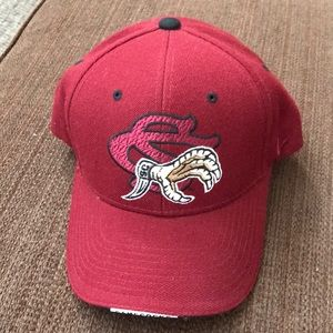 Zephyr SC Gamecocks adjustable cap.